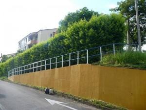 Este es es aspecto actual del muro