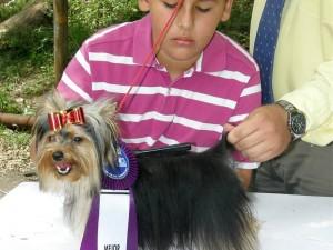 Tábata', un yorkshire terrier, fue otra de las ganadoras. Aquí junto a Nicolás Lamus.