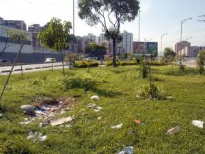 Este es el panorama que se observa en la glorieta de Provenza. Además de estar enmontados, la falta de cultura ciudadana lo convirtieron en un basurero.