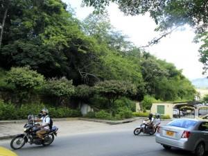 Por la portería del conjunto Alameda de Cañaveral existe la entrada provisional hacia esta zona verde.