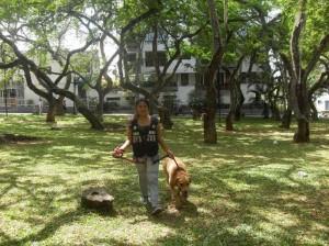 El ejercicio o actividad física es primordial para los perros
