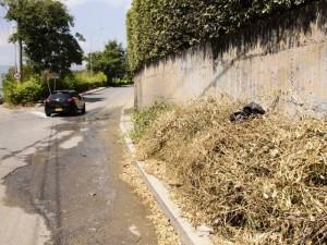 La maleza y residuos de poda también obstaculizan el andén por este camino a la Unab.