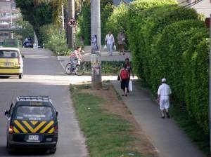 La paralela de El Bosque es una de las zonas peligrosas para los peatones.