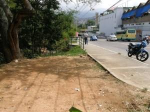 Por esta zona la comunidad denuncia que se hizo una tala para poner más puestos de ventas ambulantes.