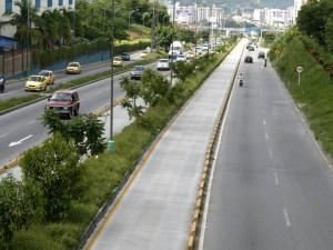 El separador de la autopista desde Provenza hasta Papi Quiero Piña requiere mantenimiento.