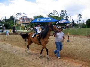 Las actividades en Acuarela serán durante todo el día. (FOTO Suministrada)