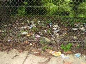 Diferentes clases de residuos pueden observarse a lo largo de la reserva. (FOTOS Suministradas)