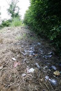 Los residentes denuncian que tampoco se hace una buena recolección de basura por el lugar.