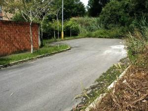 Los vecinos denuncian que esta vía les sirve a algunas personas para consumir drogas e incluso cometer actos obscenos. (FOTO Mauricio Betancourt)