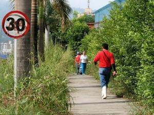 La maleza ha crecido a tal tamaño que obstaculiza a los peatones. (FOTO Mauricio Betancourt)