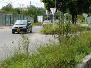 La entrada que de la autopista conduce a la paralela, a la altura de Trinitarios, se encuentra así. (FOTOS Jaime Del Río y Nelson Díaz)