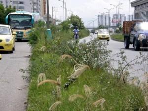 Entre la autopista y la paralela de Cañaveral se puede apreciar esta situación.