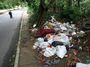 Cualquier actividad que atente contra el medio ambiente será sancionada en este comparendo ambiental. (FOTO Archivo)