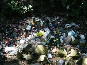 Así luce la ladera de la quebrada en Cañaveral. Algunos residentes también se habían quejado de los malos olores de la zona. (FOTO Mauricio Betancourt)