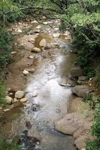 Esta es la cañada que Gente de Cañaveral propuso convertir en un Parque Lineal.