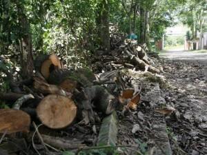 Debido a los escombros se instauró una denuncia en la Inspección de Obra y Ornato de Floridablanca en contra del conjunto Santa María de Cañaveral. (FOTO César Flórez)