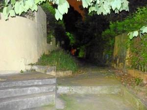 Parque de El Bosque sector C hacia la avenida es  oscuro y se necesita la adecuación de un CAI.