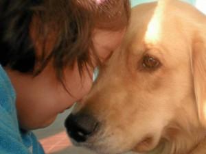 El apego es mutuo en la relación entre humanos y mascotas.