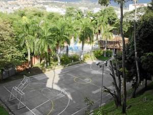 Entre las plantas de La Pera se cuentan diversas clases de palmas, una gran variedad de helechos, flores de diferentes tipos y árboles frutales.