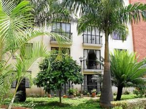 Entre los árboles del conjunto hay ficus, palmas y jardines ornamentales para evitar los problemas que generan las raíces.