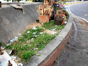 La basura también es protagonista en las calles de Cañaveral. Desechos plásticos y de alimentos se extienden a lo largo de varios lugares del sector.
