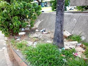 Algunos de los elementos contaminantes permanecen en las calles del sector comercial desde hace mucho tiempo sin que nadie los recoja.
