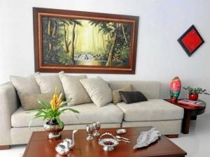 Las plantas son el aliado ideal de la decoración. Lo importante es que sean bien seleccionadas para el ambiente que serán destinadas.