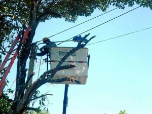 Los funcionarios de Alumbrado Público de Floridablanca revisaron todas las luces pertenecientes al parque La Pera y se verificó que estuvieran en buenas condiciones.