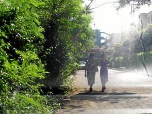 Las personas deben andar por las carreteras porque las plantas invaden los pasos peatonales en algunos sectores de Cañaveral.