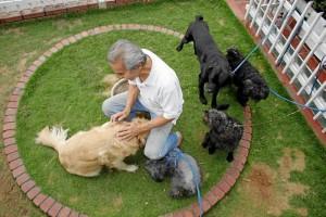 """Los guardianes de los perros coinciden en que son muy agradecidos y demuestran amor y lealtad todo el tiempo. """"Ellos entienden que uno les salvó la vida y son maravillosas mascotas"""". Foto Nelson Díaz / GENTE DE CAÑAVERAL"""