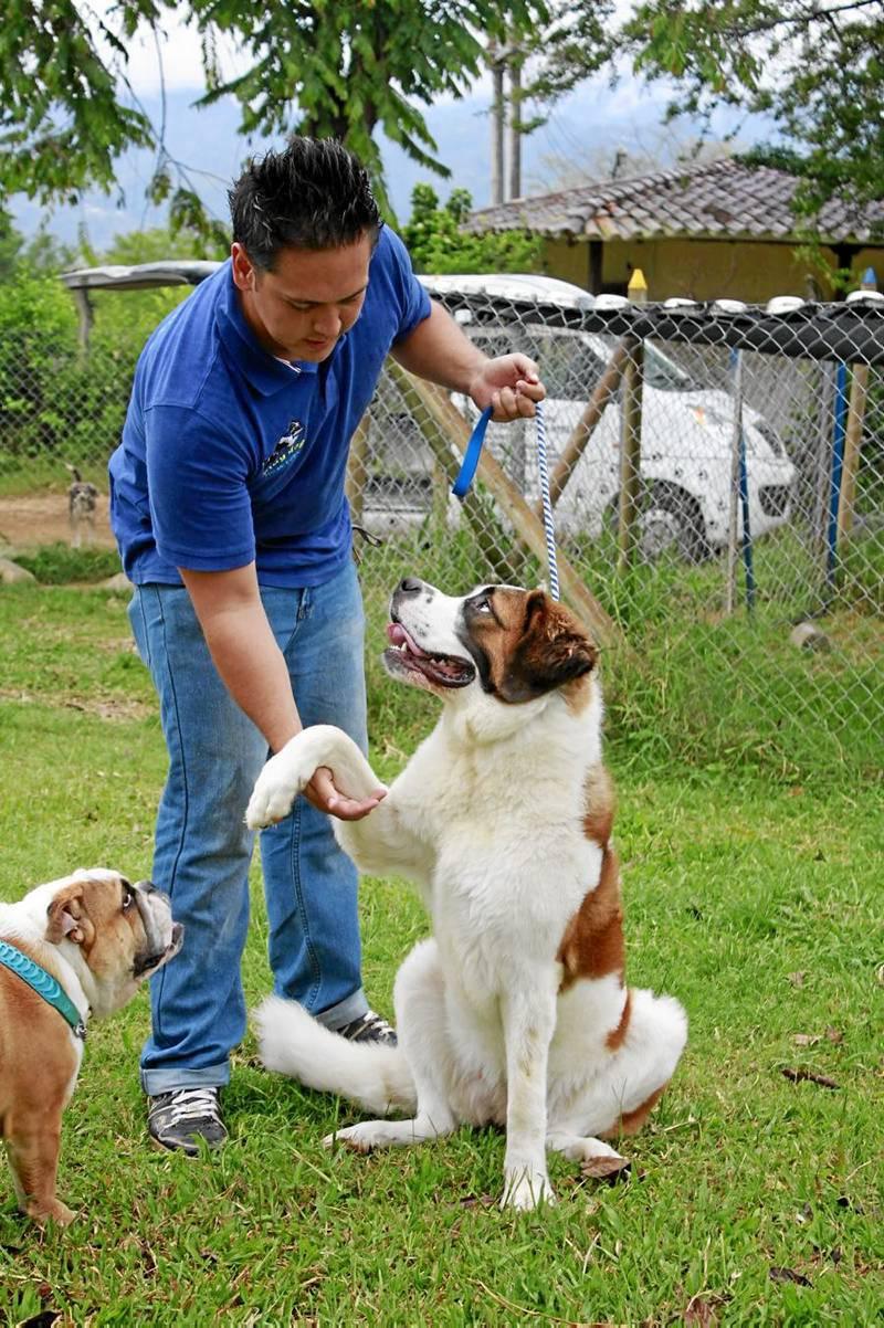 veterinaria mascotas y mascotas cañaveral