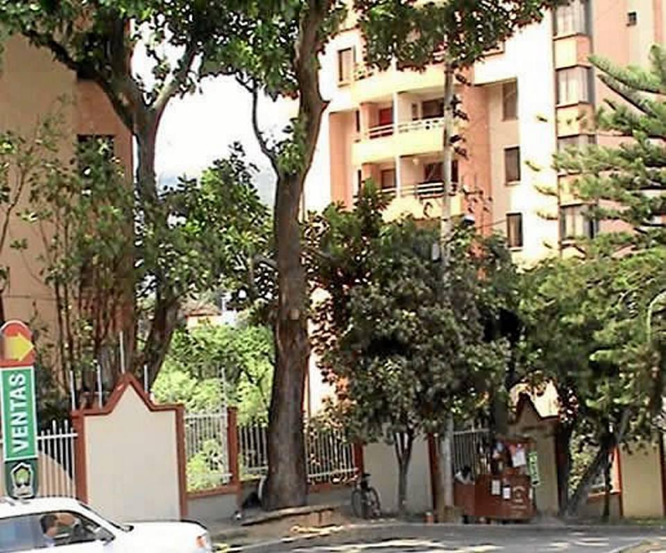 Este es el árbol que ha generado conflicto entre la administración y algunos residentes del conjunto.