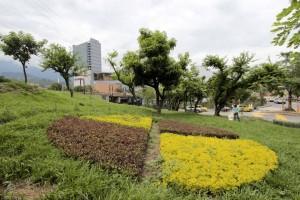 Los árboles que fueron sembrados a manera de compensación son de las especies acacia y eugenia. - Mauricio Betancourt / GENTE DE CAÑAVERAL