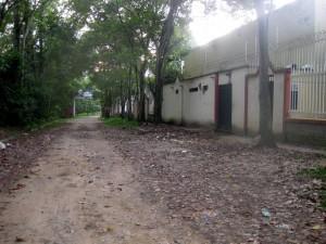 Ahora la calle está limpia porque el conjunto cuenta con un sistema de recolección de material verde.  - Imagen/GENTE DE CAÑAVERAL