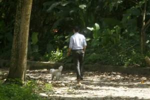 Este es el sanitario para perros, el cual ha sido un gran éxito en el Santamaría de Cañaveral. - César Flórez / GENTE DE CAÑAVERAL