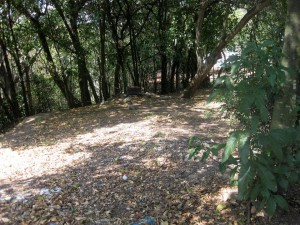 La comunidad dice que este es el sector donde los ladrones se camuflan en cualquier momento del día - Archivo/GENTE DE CAÑAVERAL.