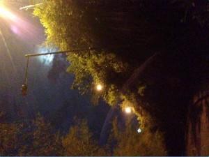Según el habitante del sector las luminarias están dañadas desde hace dos meses.  - Suministrada/GENTE DE CAÑAVERAL