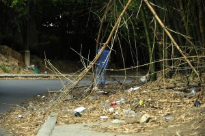 Según la comunidad en la maleza se esconden los vendedores de droga.  - Laura Herrera/GNETE DE CAÑAVERAL