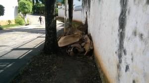 Los habitantes piden el control para los residuos en los andenes.  - Suministrada/GENTE DE CAÑAVERAL