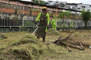 La comunidad seguirá trabajando en el mantenimiento de esta zona verde.  - Laura Herrera/GENTE DE CAÑAVERAL