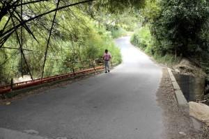 Este es el puente que está cerca al conjunto resdicencial.  - Archivo / GENTE DE CAÑAVERAL