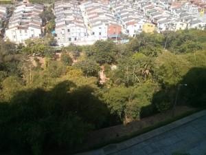 Esta reserva forestal corre peligro, según la comunidad que pide la atención de las autoridades correspondientes.  - Suministrada / GENTE DE CAÑAVERAL