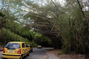 La comunidad siempre ha solicitado seguridad y mantenimiento para esta vía.  - Archivo/ GENTE DE CAÑAVERAL
