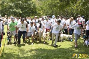 Habrá carreras maratónicas para las mascotas con sus dueños.  - Suministrada/ GETNTE DE CAÑAVERAL