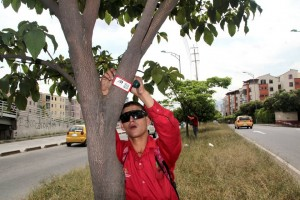Javier Gutiérrez/GENTE DE CAÑAVERALLa placa de acetato que tienen los árboles de la ciudad contiene información de la especie, la cual se puede obtener por el código de barras.