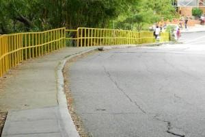 Estas son las barandas que facilitan el paso de los transeúntes y garantizan su seguridad.  - Archivo/ GENTE DE CAÑAVERAL