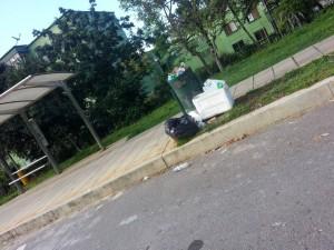 Los habitantes aledaños a la Transversal de El Bosque piden atención por parte de las empresas de aseo de Floridablanca para limpiar este sector.  - Suministrada/GENTE DE CAÑAVERAL