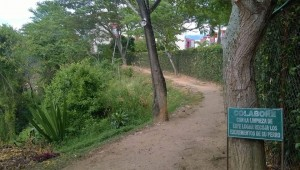 Los vecinos de parque San Agustín hacen un llamado a los dueños de las mascotas para que las lleven al paseo canino. - Suministrada/GENTE DE CAÑAVERAL
