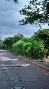 Los peatones se ven obligados a caminar por la carretera.  - Suministrada Juan Pablo Ortiz/GENTE DE CAÑAVERAL
