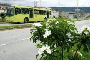 La empresa de transporte masivo se une a la jornada ambiental que adelanta la Andi  - Suministrada/GENTE DE CAÑAVERAL